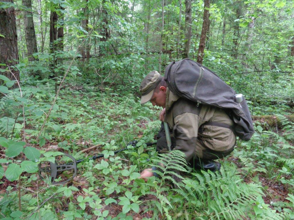 Останки неизвестного солдата обнаружены в Темкинском районе